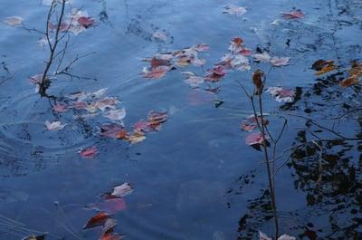 Carlin Lake Peak Color 007